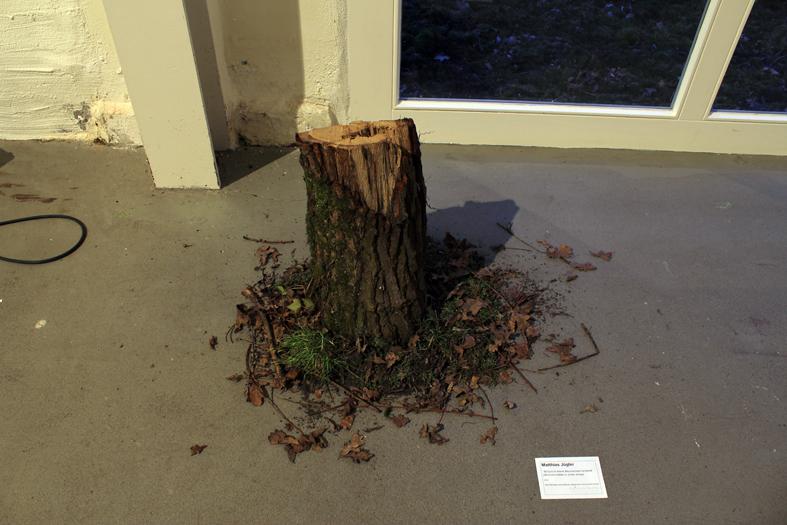 """Matthias Jügler, """"50 Euro in einem Baumstumpf versteckt (50 Euros hidden in a tree stump)"""", 2012, Das Geld bitte nicht entfernen (please don´t remove the money)"""